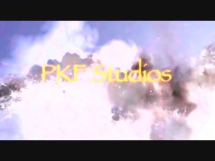 PKF-->ПКФ