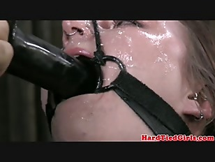 Picture BDSM Sub Mollie Rose Fucked With Dildo