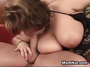 pussy_1454837