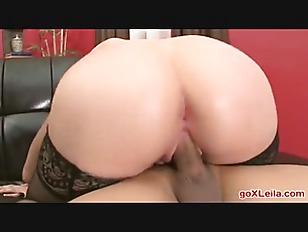pussy_1733599