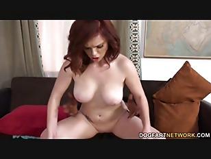 pussy_848404
