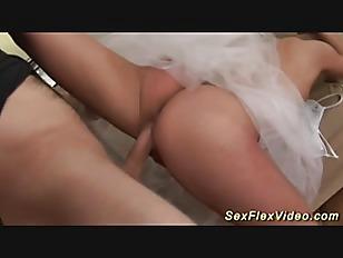 pussy_1316500