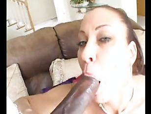pussy_914925