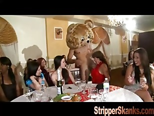 Picture One Wild Party For Dancing Bear