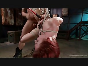 Picture Newbie Gets Brutally Fucked In Tight Bondage