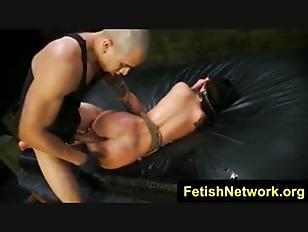 pussy_1774505