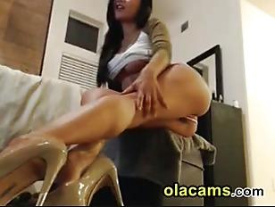 pussy_1477343