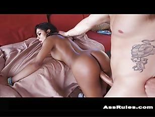 pussy_1206431