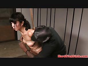 pussy_1715806