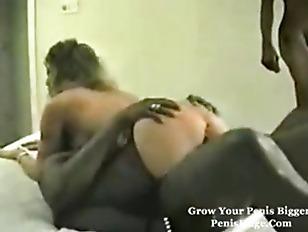 pussy_1078311