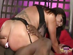 pussy_1764399