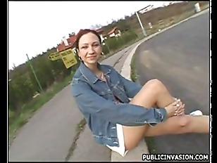 Picture Roadside Romp