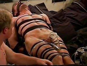 ball bondage porn