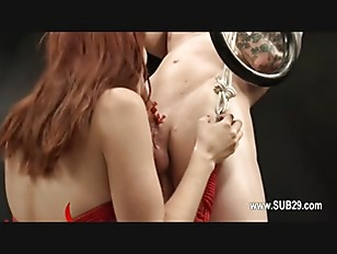 pussy_1543513