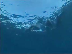 Sabine Mallory Underwater Sex...