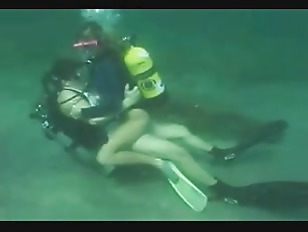 Picture Scuba Horny On The Reef