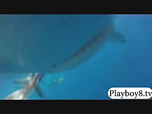 Picture Horny Hot Babes Swimming In Sharks Cage And...