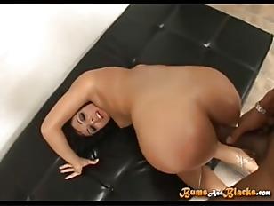 pussy_959772