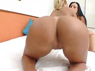 pussy_1175670
