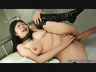 Collared Asian endures rough...