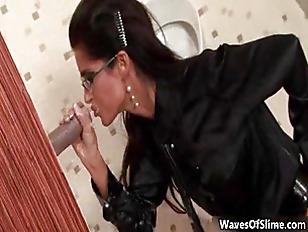 pussy_815379