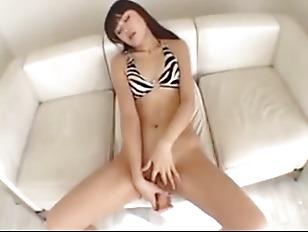 pussy_1586367