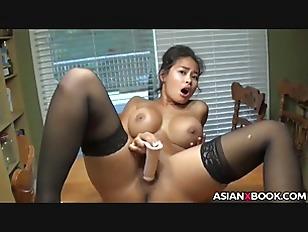 pussy_1604455