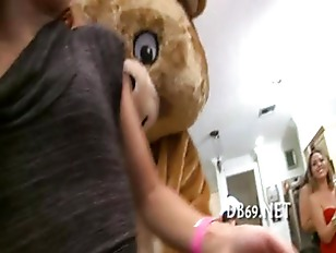 pussy_1603348