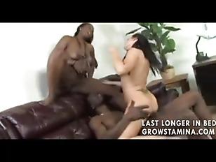 pussy_1729211