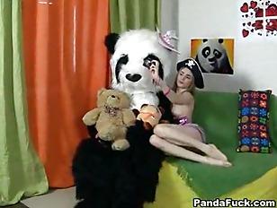 pussy_1078890