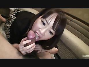 pussy_1270934