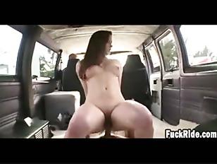 pussy_1258552