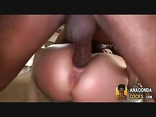pussy_1794067