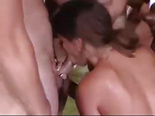 pussy_790738