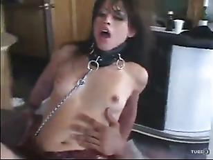pussy_1440562