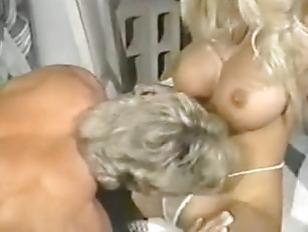 pussy_905945