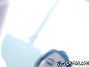 Picture Wild Cute Webcam