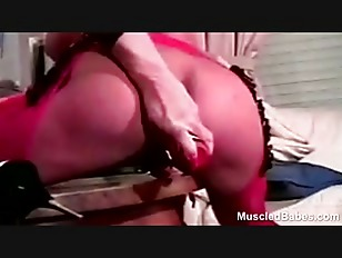 pussy_1124821