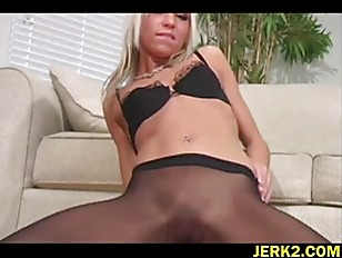 pussy_1064352