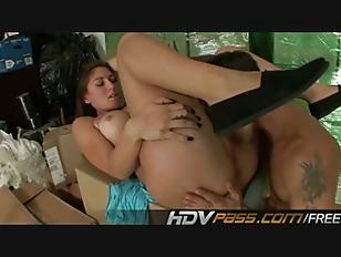 pussy_837388