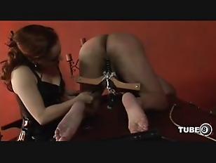 pussy_1722754