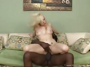 pussy_1172649