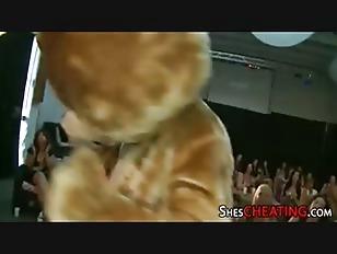 pussy_1690367