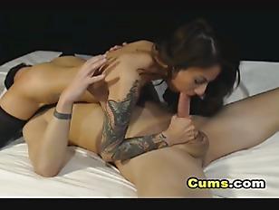 pussy_1787756