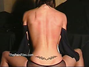 pussy_1152181
