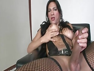 Picture Breasty Shemale In Stockings In Leather