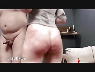 pussy_1776175